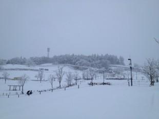 雪の日のあそび方